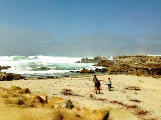 Spring Trip to Carmel California