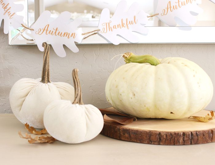 free fall printable pumpkin on table sm ver