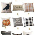 9 Beautiful Fall Pillows Selected Just for You!