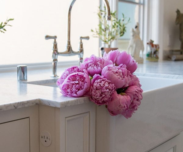Peonies: The Best Flower You'll Want to Buy in The Spring