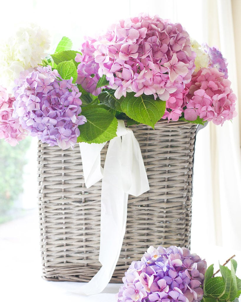 french basket with hydrangeas
