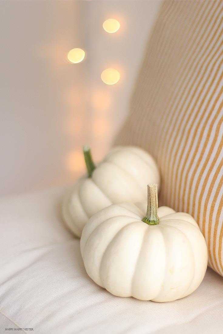 white mini pumpkins on a white cushion