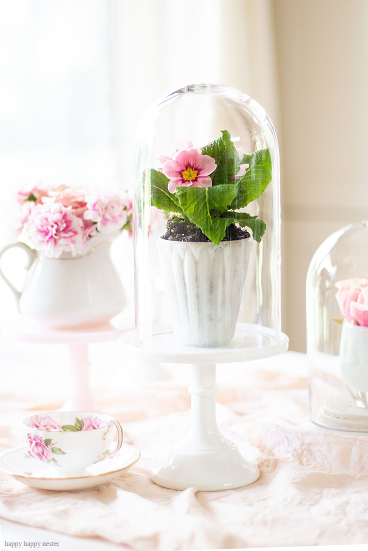Add fresh spring primrose plants on cake stands. Cake stands are easy ways to decorate a table or your home. I have gathered some Cute Ways to Use a Cake Stand that I'm sure you'll love. You can use them for the holidays or even a wedding reception. They add drama and interest because of their styles and heights. #cakestands #decorating #weddings #flowers #decor